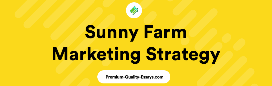Sunny Farm mini-marketing strategy