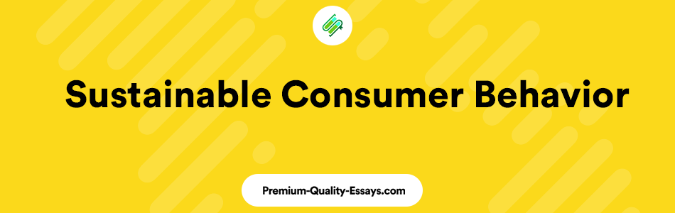Sustainable consumer behavior literary review